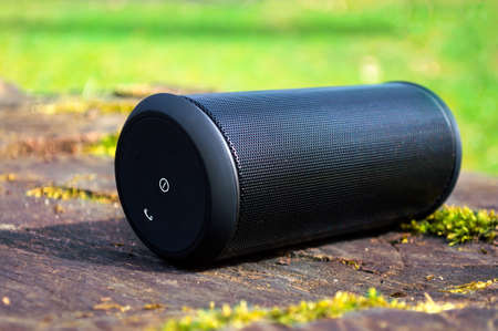 portables: Wireless speaker system  is located on the tree trunk on a green tree background.