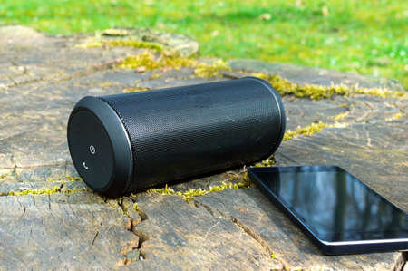 Wireless speaker connected with smartphone