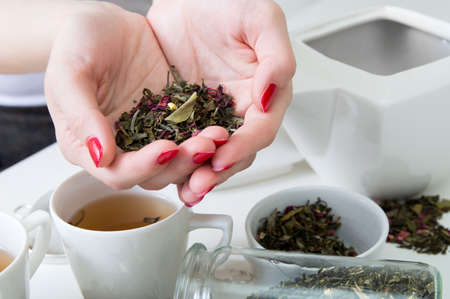 green herbs: Dried green tea in womans hands over white table with different kinds of herbs Stock Photo
