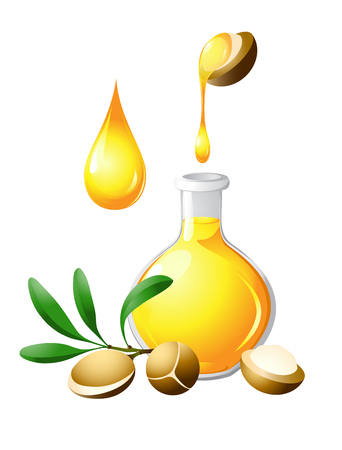 Argan oil in the bottle. Nuts and fruits of plants. Care for hair, face, hands and body. Aromatherapy, relaxation, wellness, beauty salon Illustration