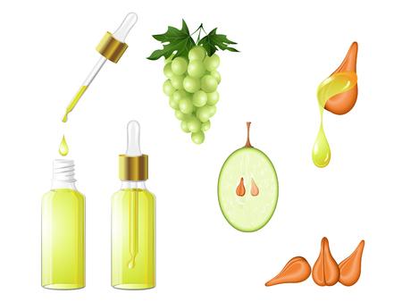 Une huile de pépins de raisin dans un flacon compte-gouttes en verre avec le sérum, les fruits, les graines et une goutte d'huile. Soins capillaires, visage, mains et corps. Aromathérapie, relaxation, centre de bien-être, salon de beauté. Vecteur EPS 10 Vecteurs