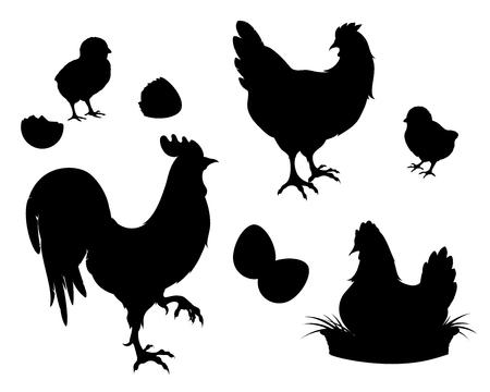 Pollo, gallo, galline, uova. Fattoria di pollo imposta sagome nere. Elementi isolati del vettore dell'illustrazione. Archivio Fotografico - 94485649