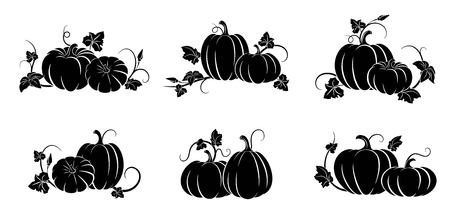 Pumpkin. Set of silhouettes of different pumpkins.  Isolated silhouette vegetable,  leaves, flower and seeds. Vector illustration