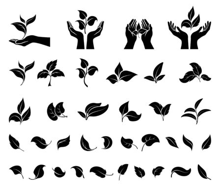 Hand holding leaves. Leaf icons set.  Concept environmental conservation, nature protection, ecology. Black silhouette. Isolation. Vector illustration