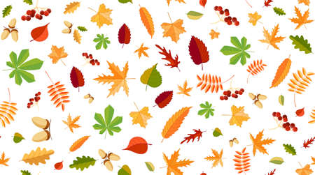 Autumn background with leaves, berries and nuts. Colorful seamless pattern. Isolated. Vector illustration