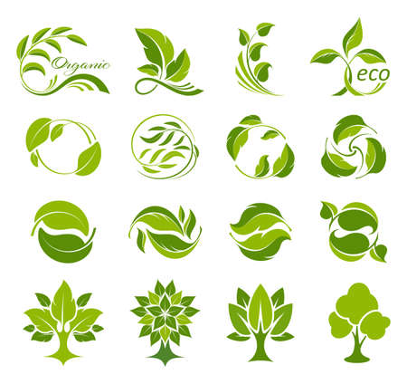 Leaves and trees icons set. Collection of logos for fresh and ecological products. Bio, organic and natural symbols. Concept environmental conservation, nature protection, ecology. Isolation. Vector