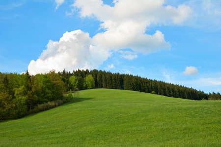 푸른 하늘과 녹색 필드 및 포리스트 힐 스톡 콘텐츠