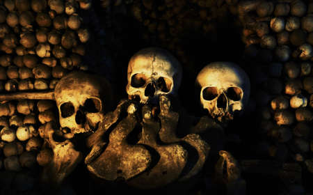 Three Human Skulls sitting on a pile of bones.
