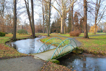 rivulet: Small Bridge over a rivulet in autumn Stock Photo