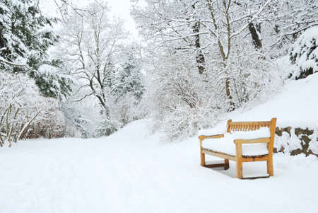 Park bench and trees covered by heavy snow photo