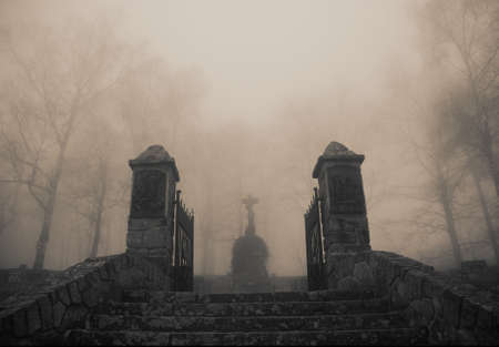 view of a wooden doorway: Scary old  entrance to forest graveyard in dense fog