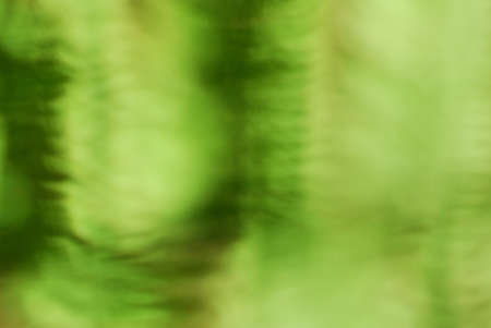 unspecified: Abstract lush green bokeh background
