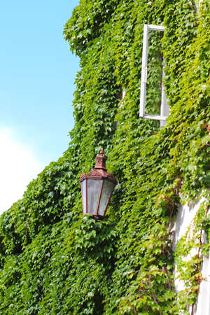 House with old street lamp and opened window covered in ivy photo