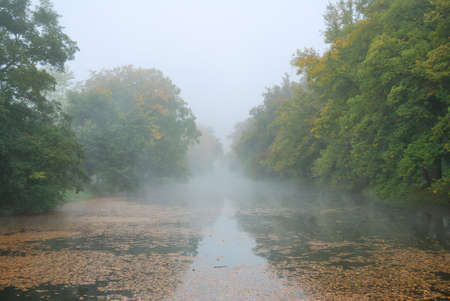 Long pond and forest park trees in misty morning weather photo