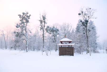 Oriental arbour covered in deep snow and tall trees with mistletoe photo