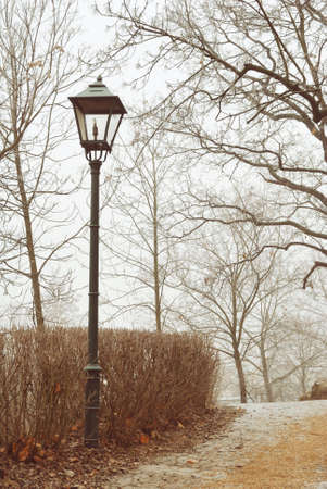 Metal street lamp in foggy town park photo