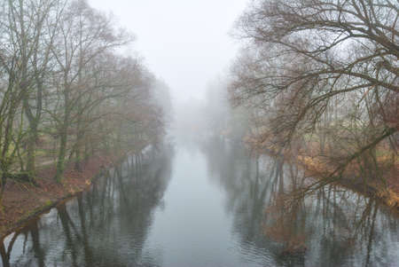 Long river disappearing in fog with tall trees on the banks photo