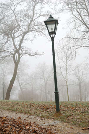 Street lamp and leafless trees in autumn fog photo