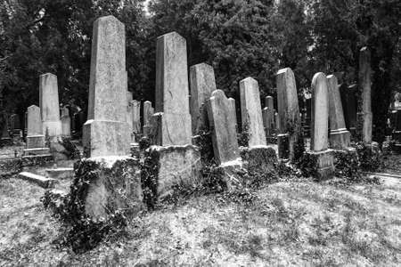 Ancient cemetery tombstones in winter in black and white photo