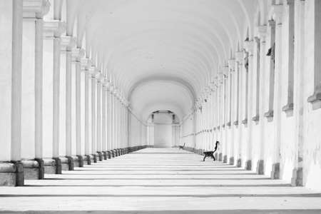 Long baroque colonnade in black and white tone