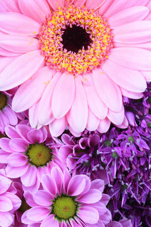 Abstract purple and pink flowers background photo