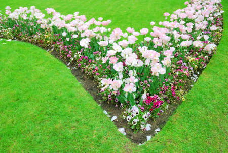 Colorful flowers and green grass in springtime