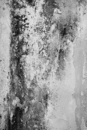 Old dirty and weathered wall texture in black and white color