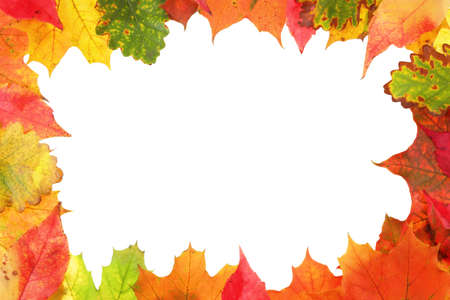 Frame composed of colorful autumn leaves Stock Photo