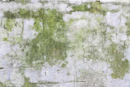 smudgy: Old and weathered wall texture