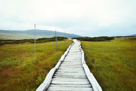 turba: Pasarela de madera que conduce a través de la montaña turbera