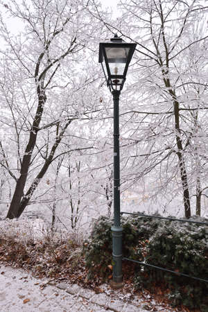 Street lamp with rime covered trees Stock Photo