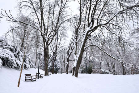City park covered in fresh white snow Stock Photo