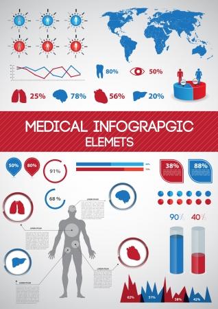 corazon humano: Infografías médicas del cuerpo humano con los órganos internos Vectores