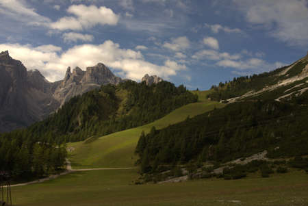 Alpine landscape with mountain peaks, forest and alpine meadows