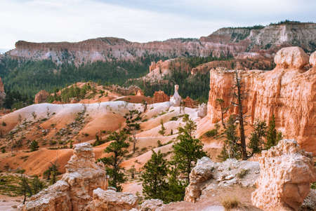 national park: Bryce Canyon National Park,View of the horse trail, Utah, USA Stock Photo