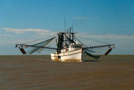 shrimp boat: Shrimp boat returning from the sea in harbor