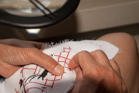 skillfully: Womans hands skillfully embroider on canvas Stock Photo