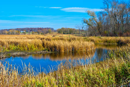 Glimpses of Autumn in Horicon National Wildlife Refuge,Wisconsin