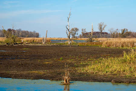 migratory birds: Restored wetlands Horicon Marsh - resting place for many migratory birds, Wisconsin, USA