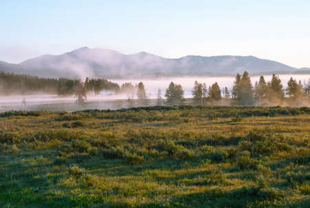 wakening: Early morning in the valley of the Yellowstone River Stock Photo