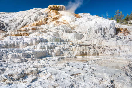 trickles: The white limestone formations of the Palette Spring create stunning earth forms that resemble natural basins, Mammoth Hot Springs, Yellowstone National Park