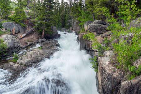 Cascading water of Lake Creek Falls in Wyoming Stock Photo