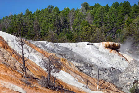 trickles: Bright colors of  Palette Spring makes it memorable, Mammoth Hot Springs,  Yellowstone National Park