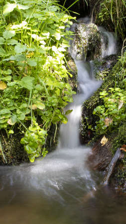 Blurred stream of a mountain stream flowing over moss and stones on the sun.