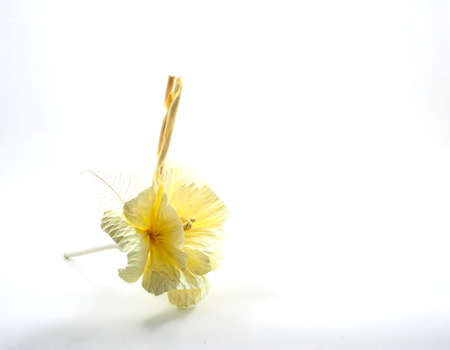 Thai Funeral flower, artificial used for cremation