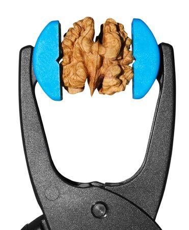 vice grip: nut in grip vice