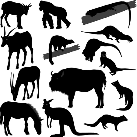 Some vector silhouettes of different animals photo