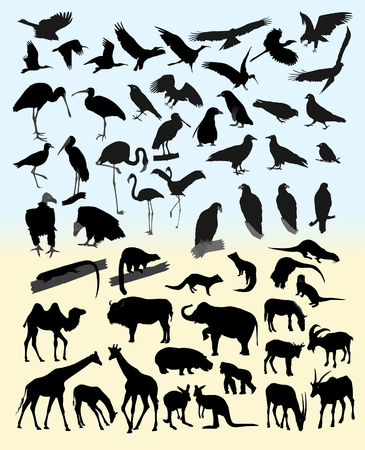 Many silhouettes of different animals and birds Vector