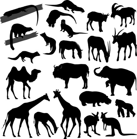 Silhouettes of different animals Illustration