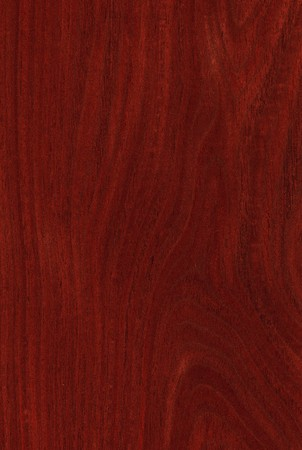 Texture of jarrah (high-detailed wood texture series) Stock Photo - 4305060